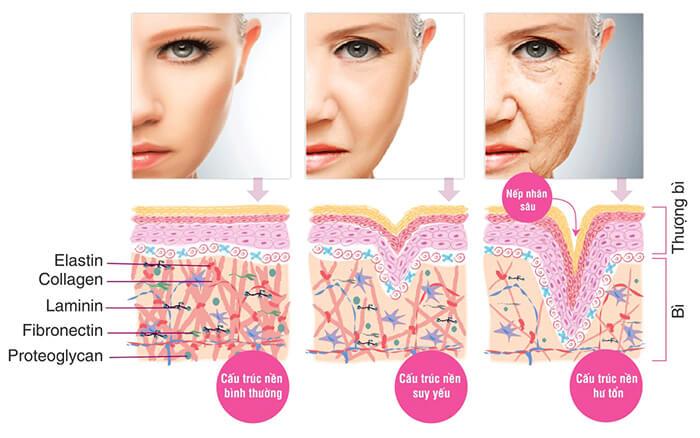 vien uong chong lao hoa trang da neocell super collagen c 360 vien anh 1